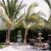 Casita Garden