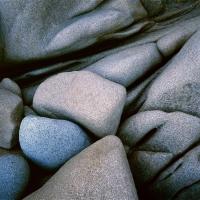 Iguana Rocks, detail