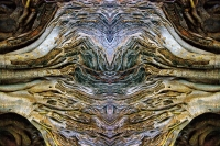 ROOTS-0869, mirror