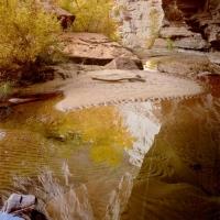 Grand Gulch, Cedar Mesa, Utah