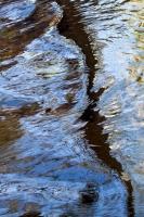 Boulder Creek Reflections