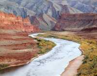 Raplee Anticline and the San Juan River, Utah